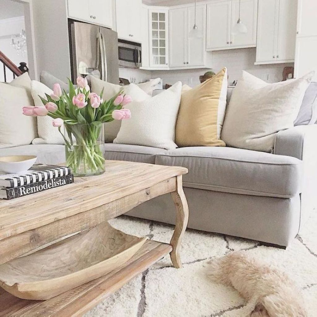 Cozy Living Room032