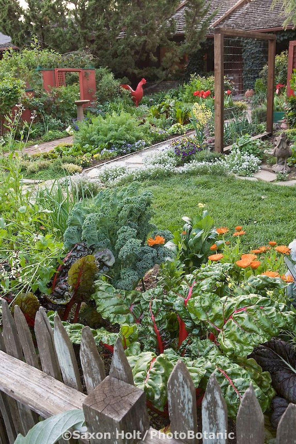 Garden Fencing Ideas007