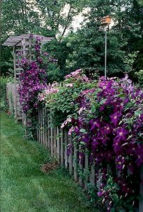 Awesome Garden Fencing Ideas For You to Consider 14