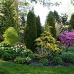 Backyard Landscaping Ideas To Spruce Up Your Home Appeal 8