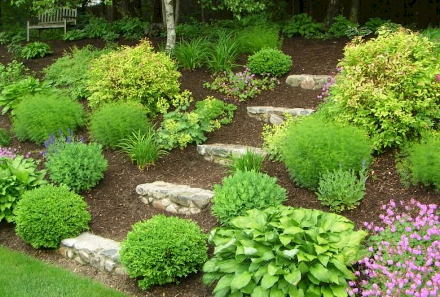 Backyard Landscaping150