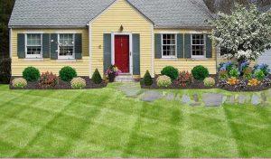 Frontyard Landscaping005