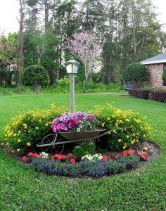 Frontyard Landscaping007