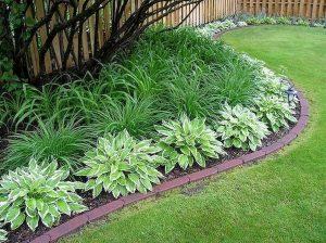 Frontyard Landscaping011