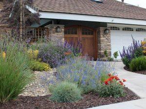 Frontyard Landscaping019