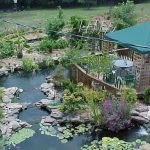 Enjoy the Peace and Serenity with Backyard Pond Decor 3