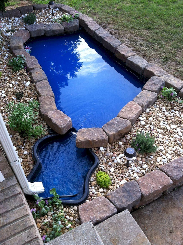 Backyard Pond006
