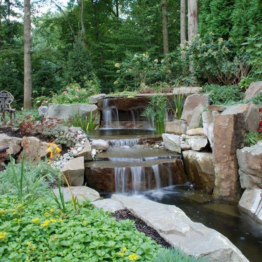 Backyard Pond009