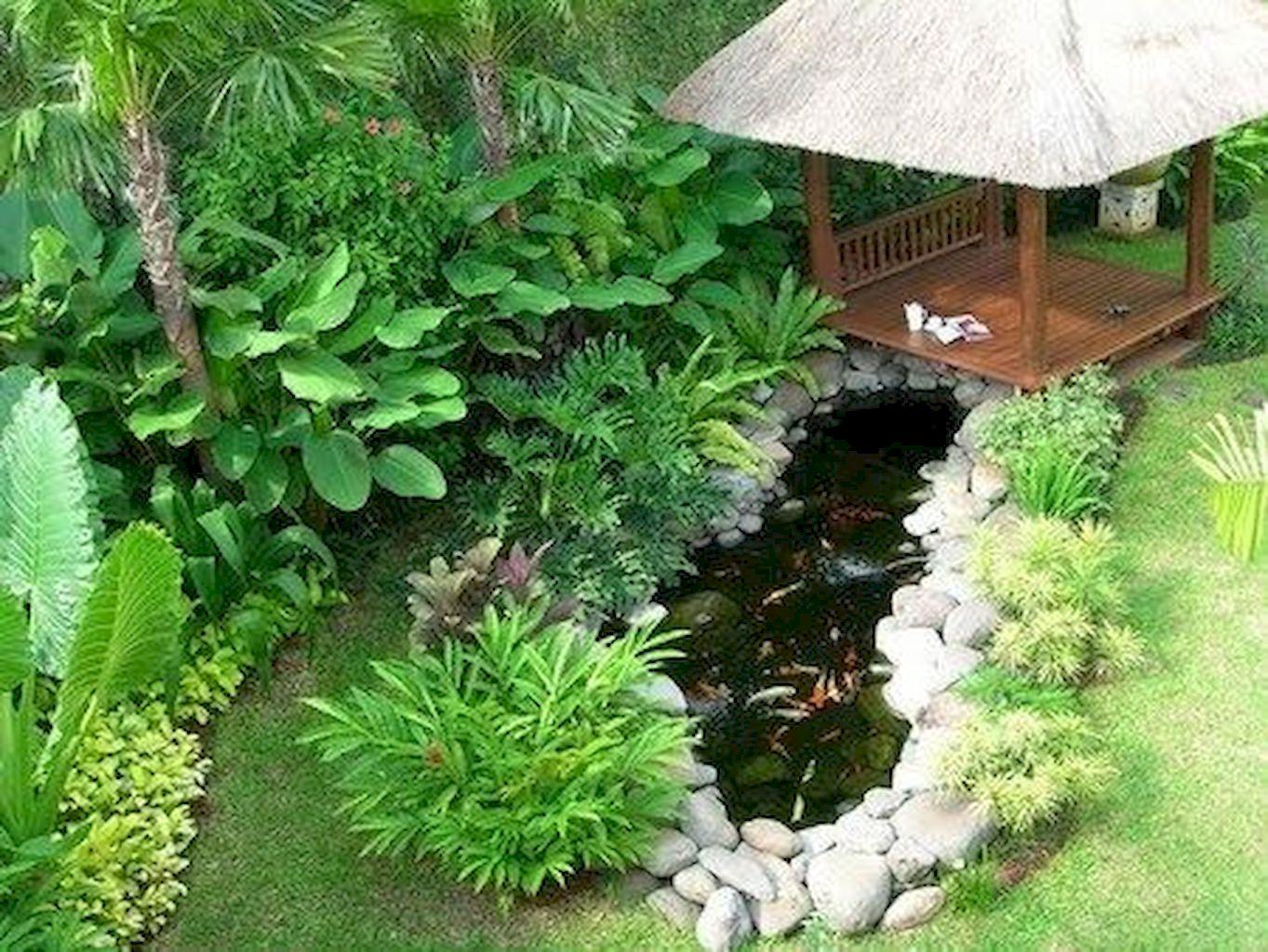 Backyard Pond014