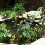 Enjoy the Peace and Serenity with Backyard Pond Decor 15