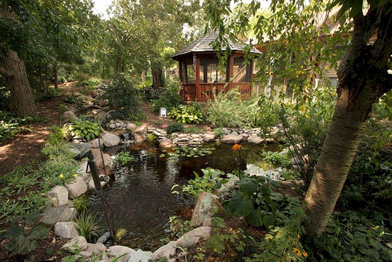 Backyard Pond016