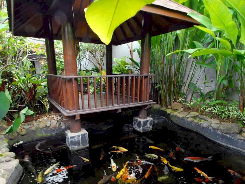 Backyard Pond024