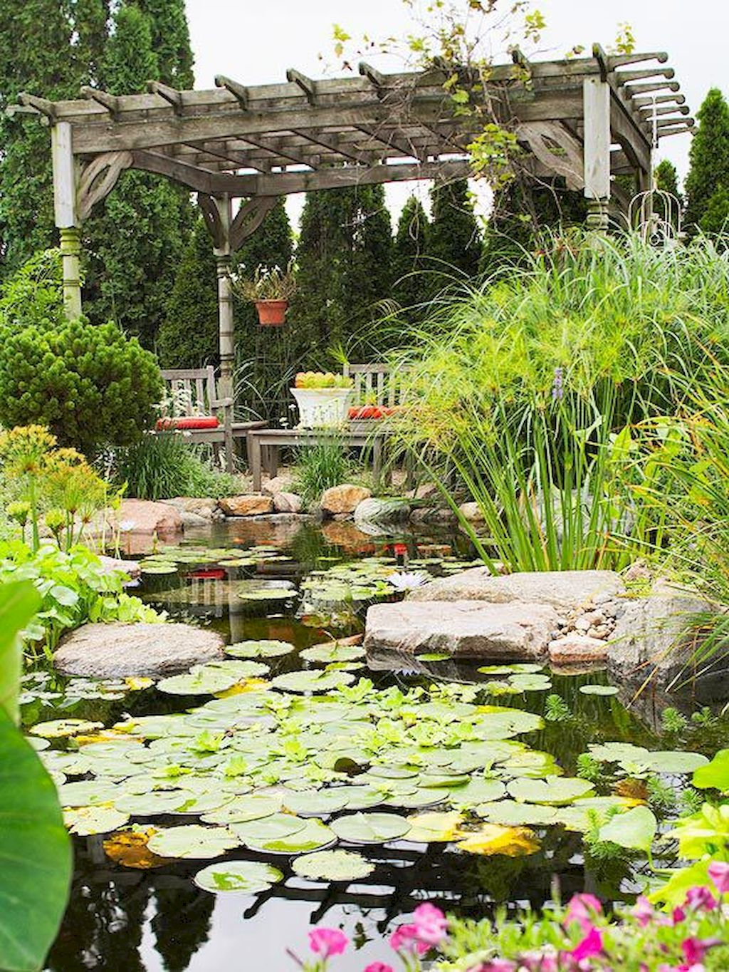 Backyard Pond033