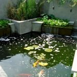 Enjoy the Peace and Serenity with Backyard Pond Decor 34