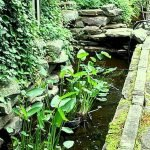 Enjoy the Peace and Serenity with Backyard Pond Decor 35