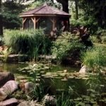 Enjoy the Peace and Serenity with Backyard Pond Decor 38