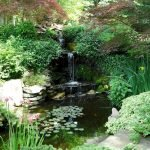 Enjoy the Peace and Serenity with Backyard Pond Decor 43