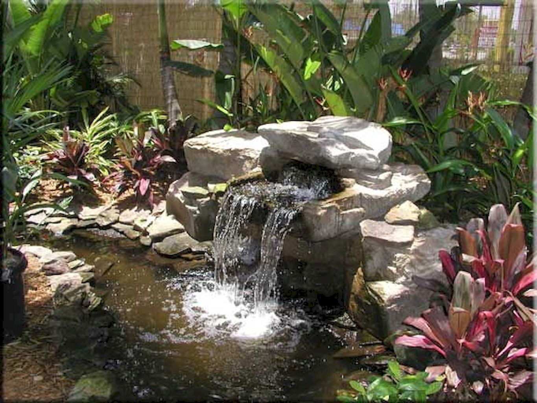 Backyard Pond045