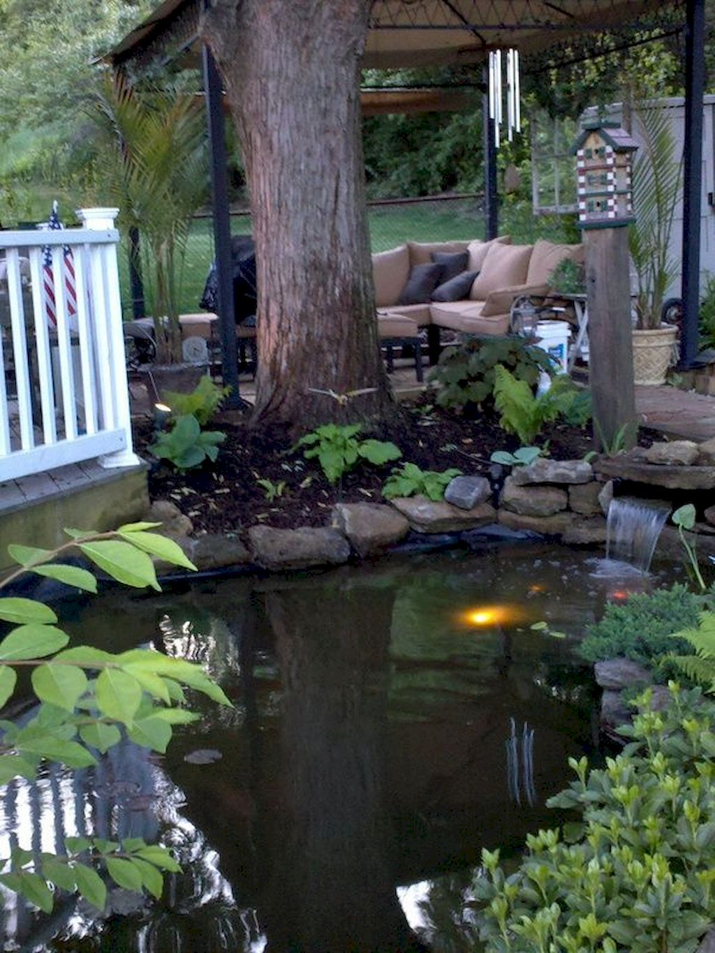 Backyard Pond046