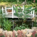 Enjoy the Peace and Serenity with Backyard Pond Decor 51