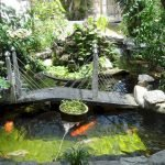 Enjoy the Peace and Serenity with Backyard Pond Decor 55