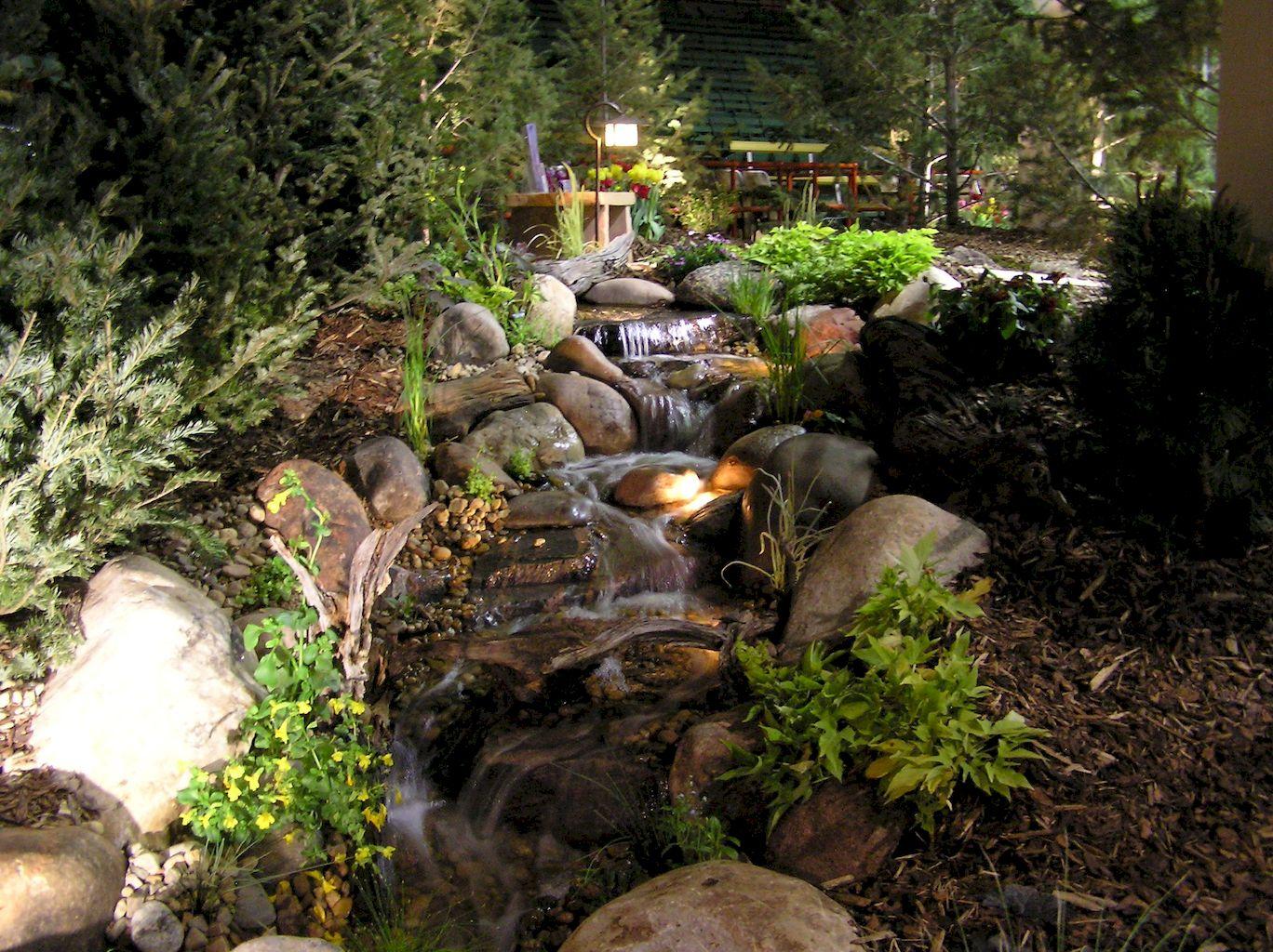 Backyard Pond059