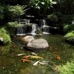 Enjoy the Peace and Serenity with Backyard Pond Decor 61