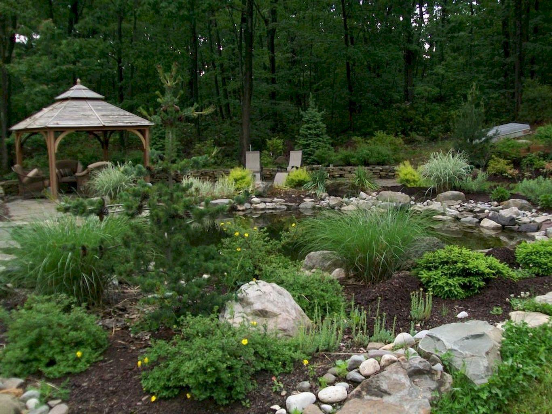 Backyard Pond069