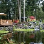 Enjoy the Peace and Serenity with Backyard Pond Decor 70