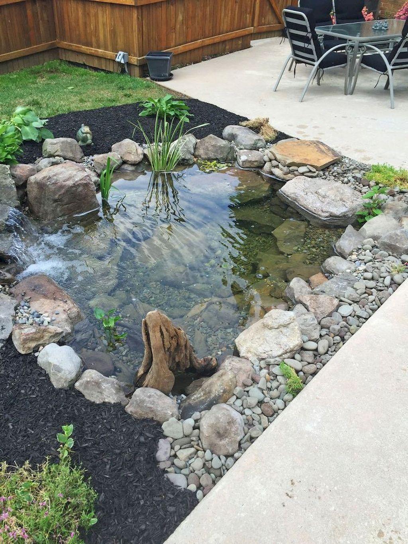 Backyard Pond076