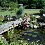 Enjoy the Peace and Serenity with Backyard Pond Decor 84