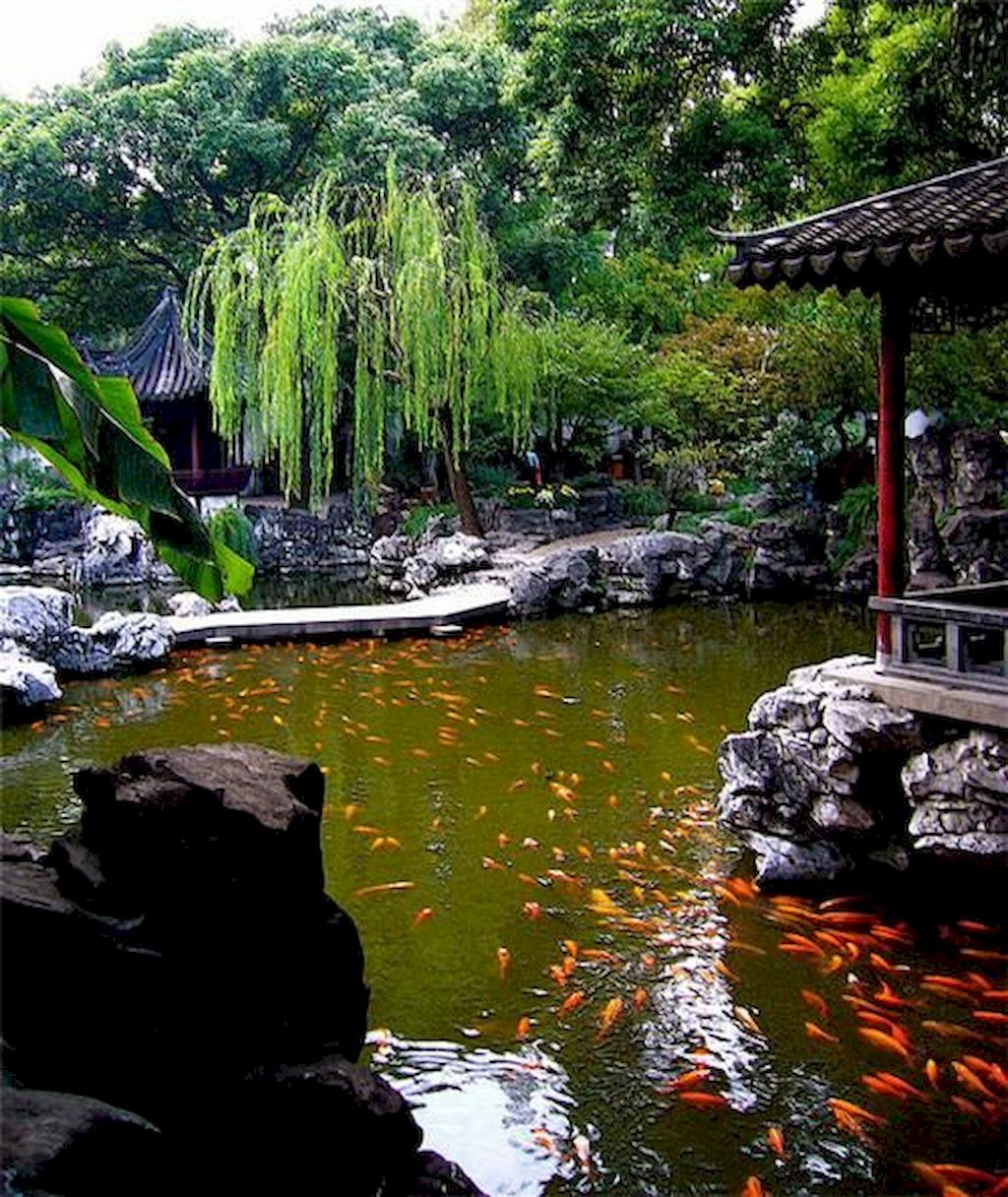 Backyard Pond089
