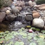 Enjoy the Peace and Serenity with Backyard Pond Decor 91