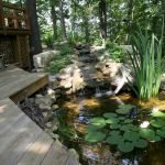 Enjoy the Peace and Serenity with Backyard Pond Decor 93