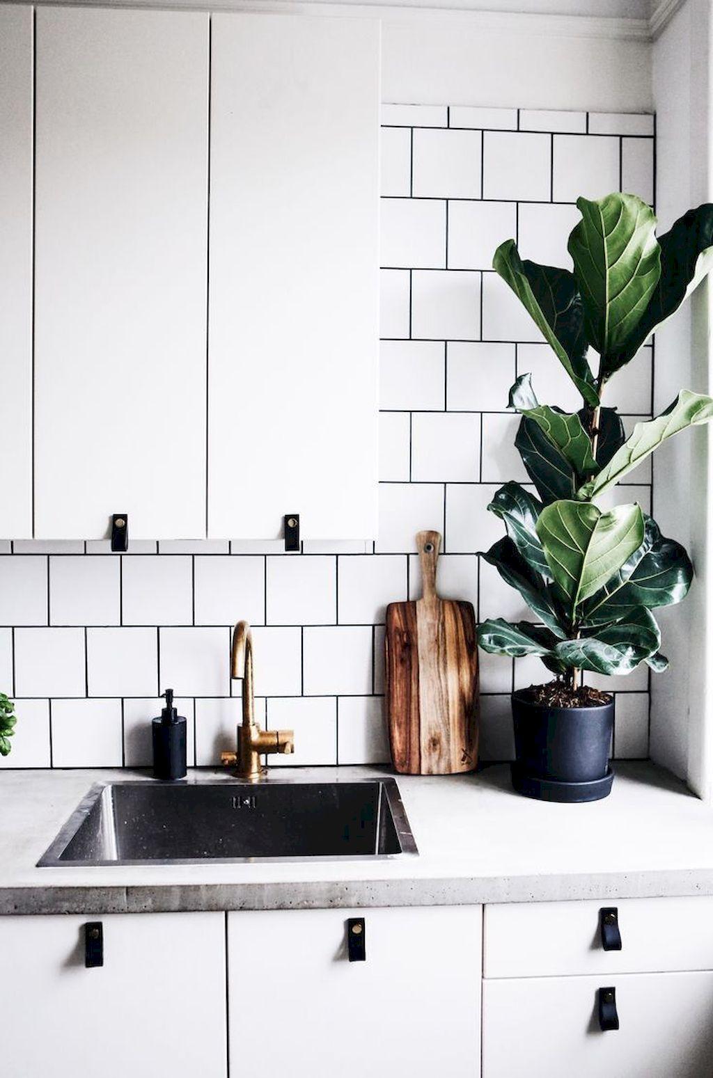 Minimalist Kitchen155