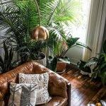 Apartment Indoor Gardening With Tropic Indoor Plants 140