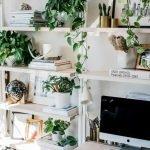 Apartment Indoor Gardening With Tropic Indoor Plants 143