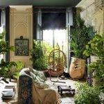 Apartment Indoor Gardening With Tropic Indoor Plants 4