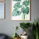 Apartment Indoor Gardening With Tropic Indoor Plants 21