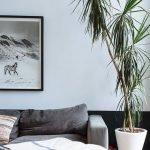 Apartment Indoor Gardening With Tropic Indoor Plants 39