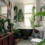 Apartment Indoor Gardening With Tropic Indoor Plants 43