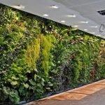 Apartment Indoor Gardening With Tropic Indoor Plants 49