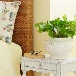 Apartment Indoor Gardening With Tropic Indoor Plants 86