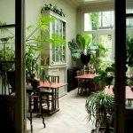 Apartment Indoor Gardening With Tropic Indoor Plants 95