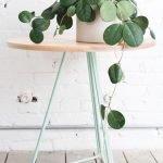 Apartment Indoor Gardening With Tropic Indoor Plants 109