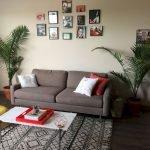 Apartment Indoor Gardening With Tropic Indoor Plants 129