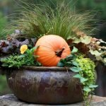 Easy and Inexpensive Fall Decorating Ideas 59