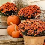 Easy and Inexpensive Fall Decorating Ideas 108