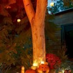 Classy Halloween Party Decoration 102