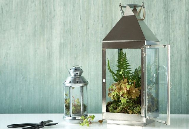 8 Turn a Lantern Into a Terrarium